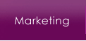 Marketing Services from Mystic Design and Print